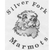 Silver Fork Marmots